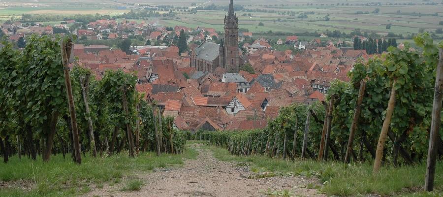 Maison Hauller à Dambach la Ville en Alsace