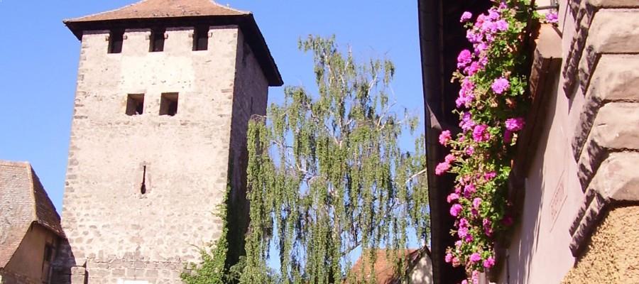 Maison Hauller en Alsace à Dambach la ville